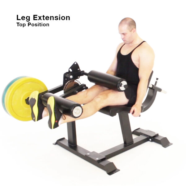 Leg Extension Leg Curl combination