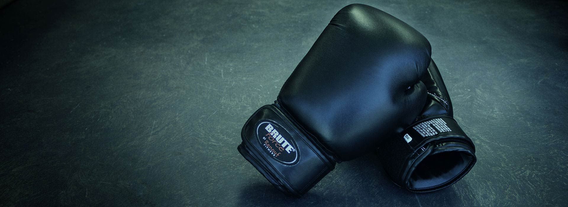 boxing gloves mitts
