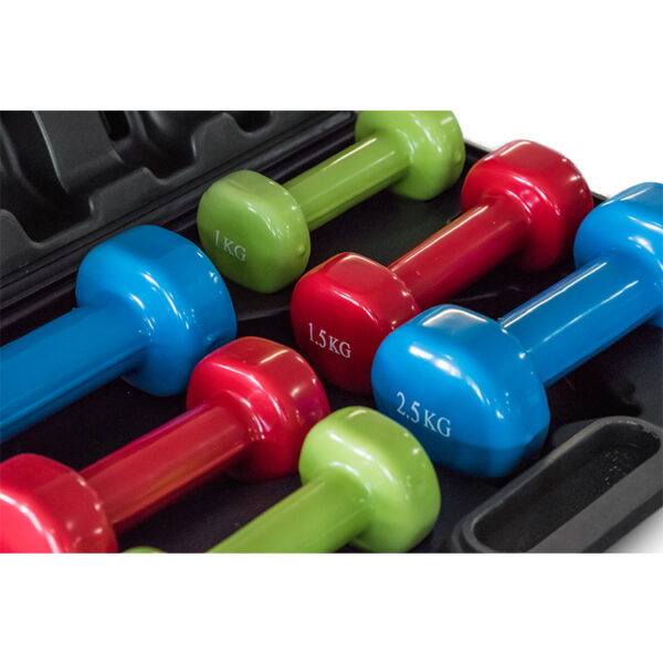 DSET Dumbbell Vinyl Dipped Set with Carry Case