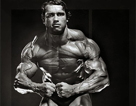 Heavy Duty training HIT Muscle Mass by David Renouf