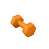 Dumbbell by Renouf Fitness