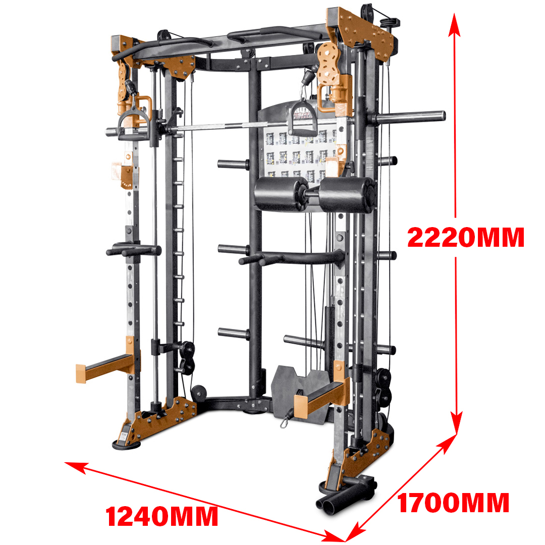functional Trainer BRUTEforce Renouf Fitness